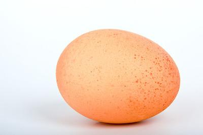 egg-16868_640
